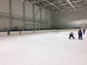 хоккей в Арена Генезис