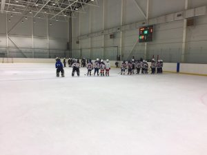 Хоккей на Арене Генезис