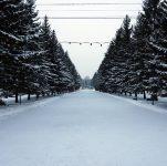 Каток в центральном парке красноярска